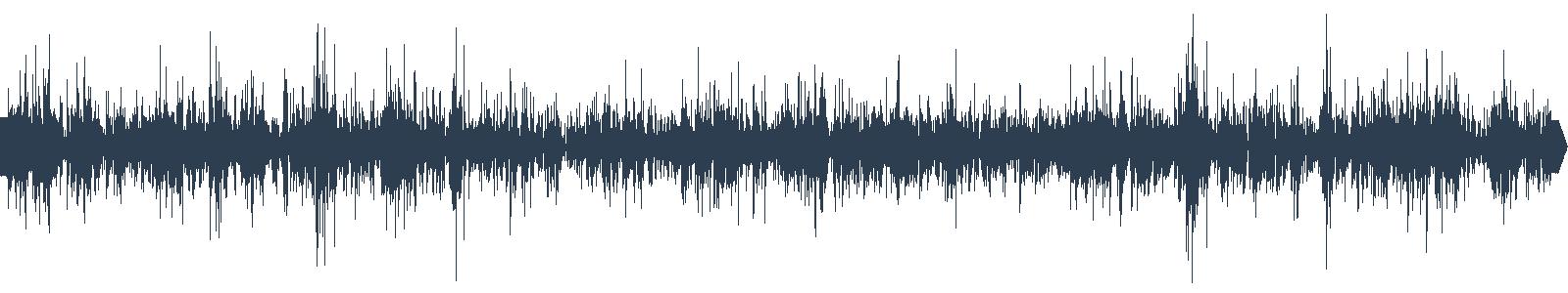 Audinovinky 19 - V televizi a posilovně waveform