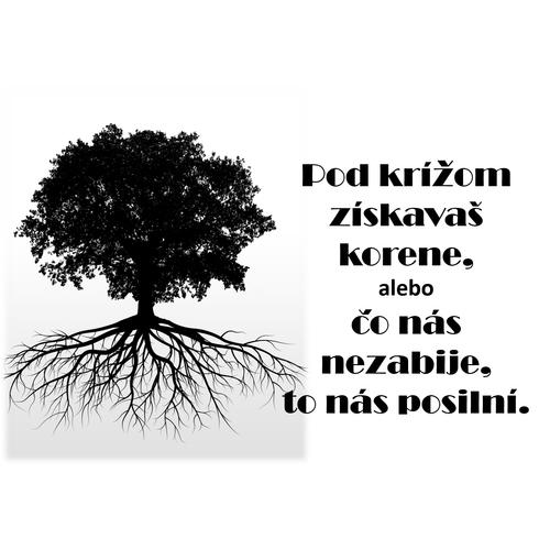 Pod krížom získavaš korene: čo nás nezabije,  to nás posilní!