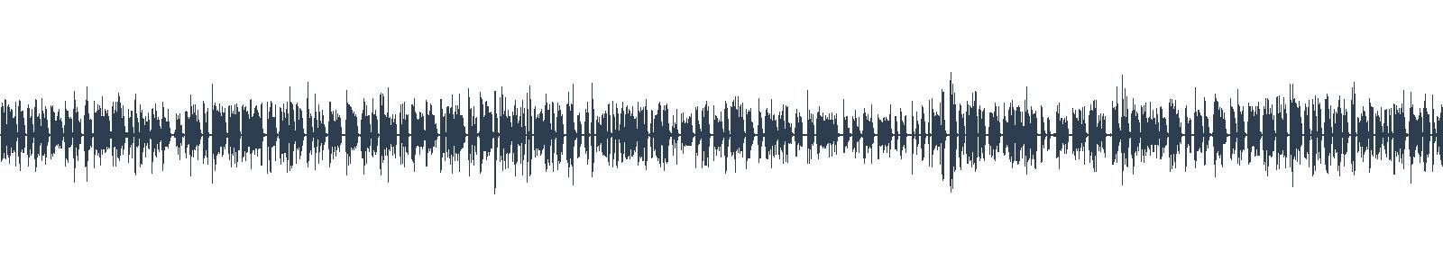 Netočka Nezvanovová waveform
