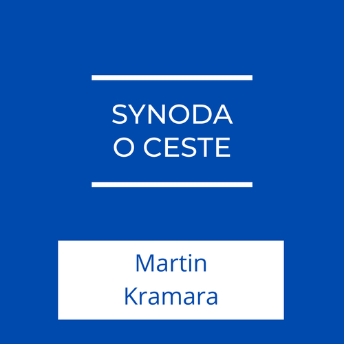 Synoda o ceste | Jeden na jedného