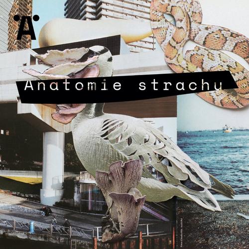 Anatomie strachu – ukázka z audioknihy