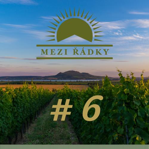 #6 Co všechno musí přežít vinohradník, aneb jak se dělají hrozny