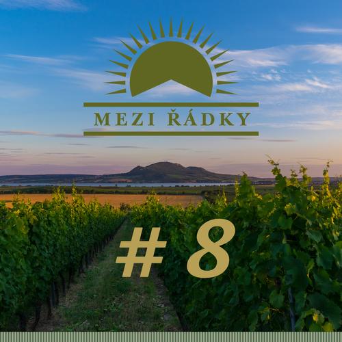 #8 O hudebním klubu mezi vinohrady