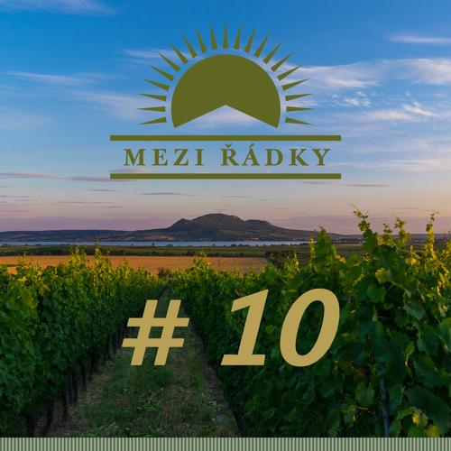 #10 O reproduktorech na víno