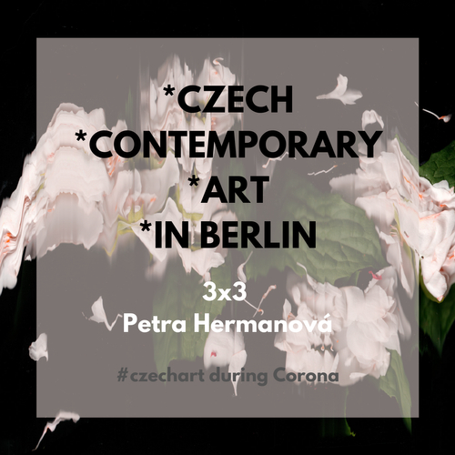3x3 Czech Contemporary Art in Berlin with Petra Hermanová