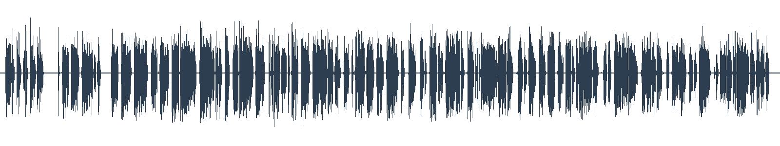 Rado Ondřejíček - Homo ASAPiens waveform