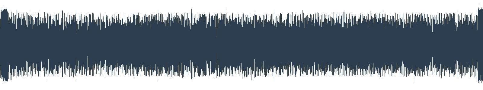 Eko vajcia waveform